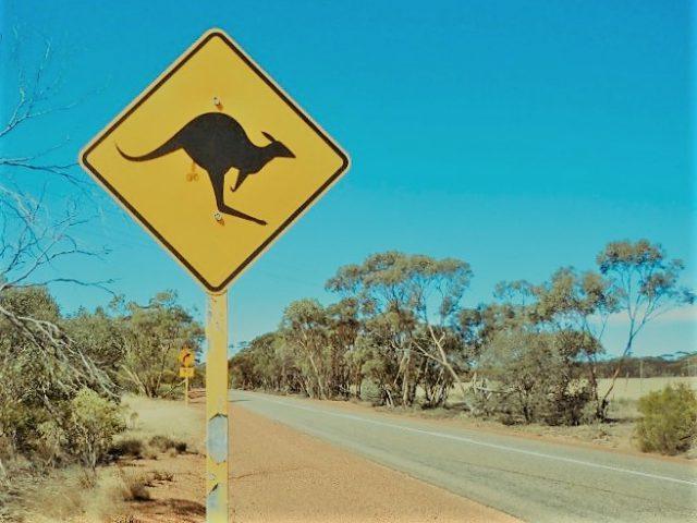 オーストラリアのワーホリで受けたカルチャーショック