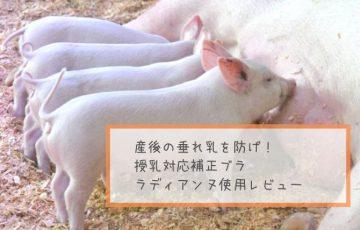 産後の垂れ乳を防げ!授乳対応補正ブラ ラディアンヌ使用レビュー